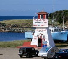 Pleasant Bay, Cape Breton
